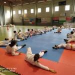 karate8+